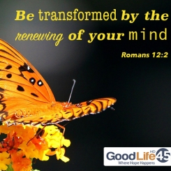 transformed-facebook-GL