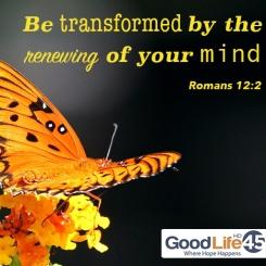 transformed-facebook-GL